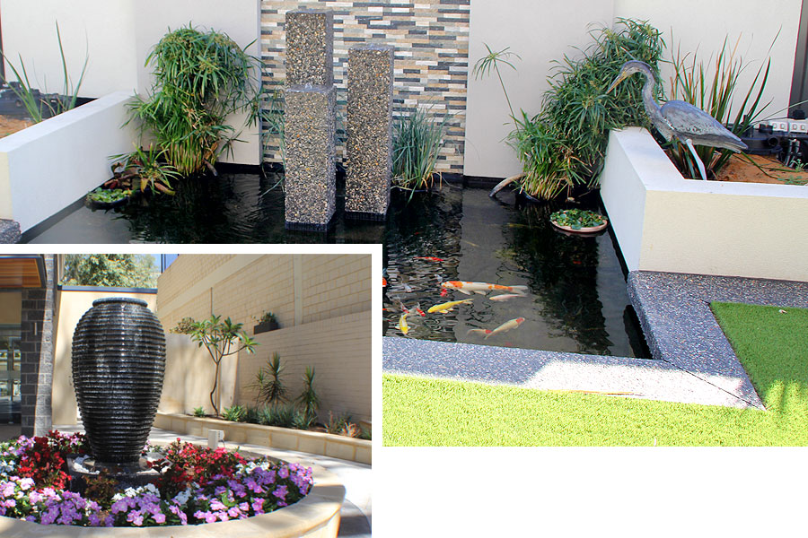 water features fish pond and building entrance